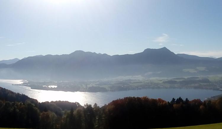 Ausblick auf den See und die Berge, im Vordergrund ein Wald