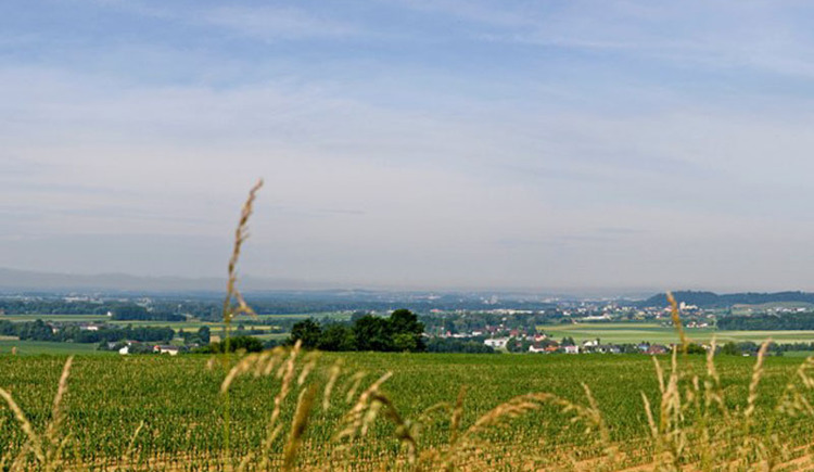 Panoramablick Perg Weinzierl. (© WGD Donau Oberösterreich_Projektkraft)