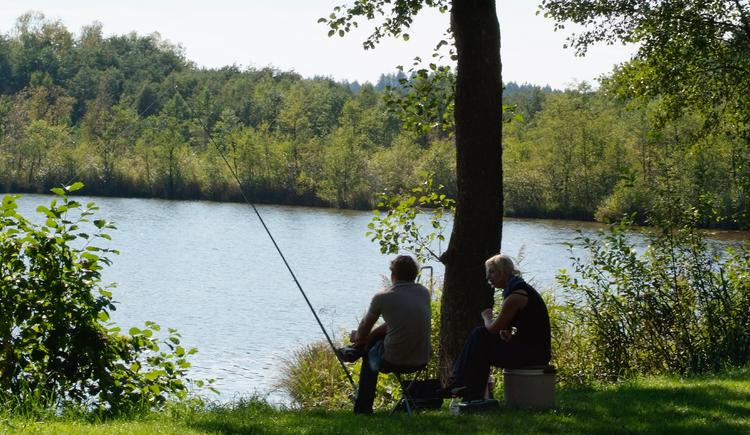 Raubfischgewässer Holzöstersee