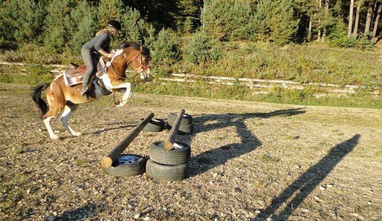 sun.horse.ranch.höhnhart1.JPG