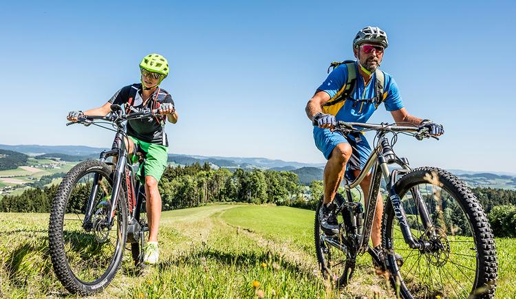 Fröhlich E-Bike Verleih (© Foto: OÖ Tourismus)