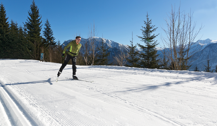 cross country skiing in Bad Goisern (© Viorel)