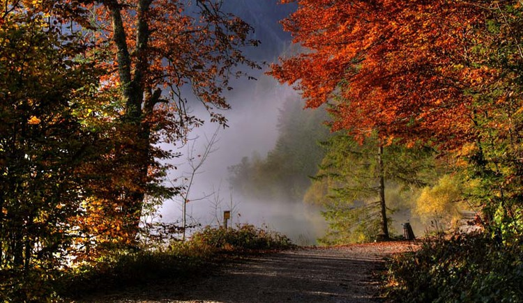 Offensee im Herbst (© Fotoklub Ebensee, Vilsecker)