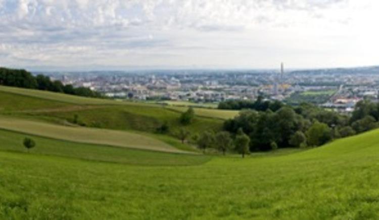 Panorama Pfenningberg (© WGD Donau Oberösterreich Tourismus GmbH/Weissenbrunner)