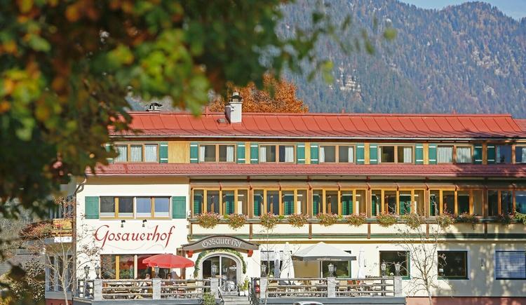 Gosauerhof mit Kalmberg (© Gudrun Laserer)