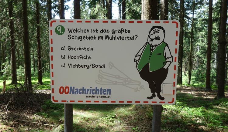 #9 (© Johann Mülleder)