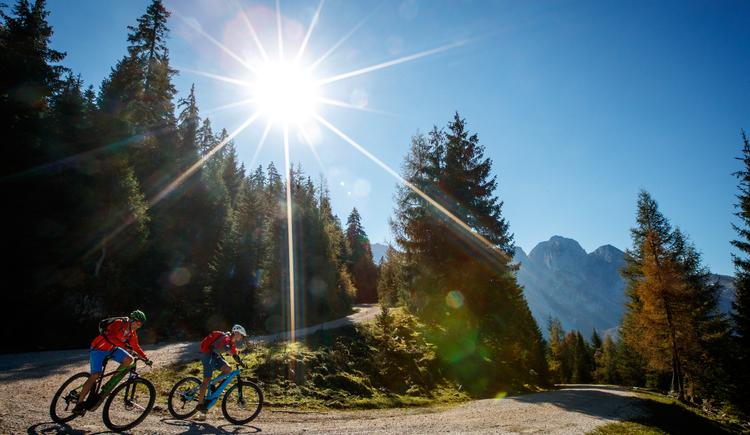 Gemütliche Abfahrt auf den freigegeben Forststraßen von Gosau. (© bikeboard.at Erwin Haiden)