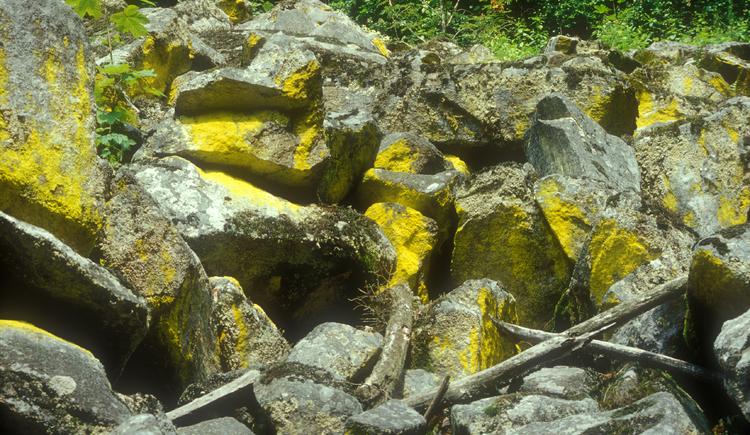 Blockstrom mit gelben Staubflechten