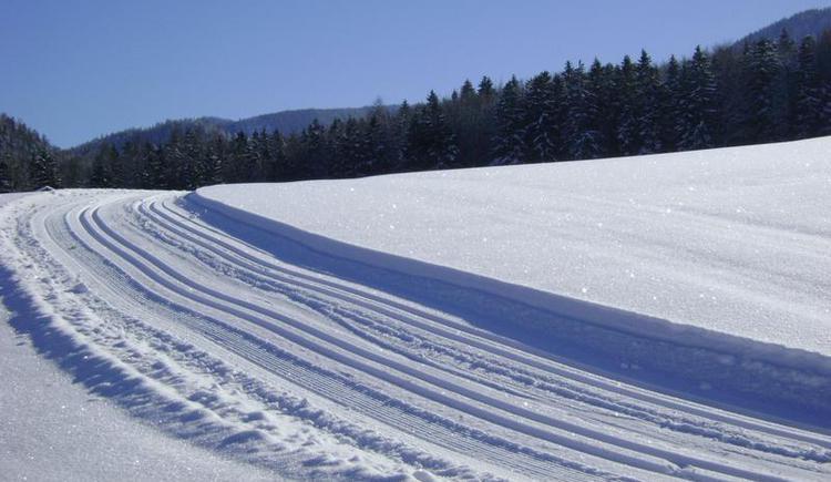 Cross-country skiing trail Hohenau