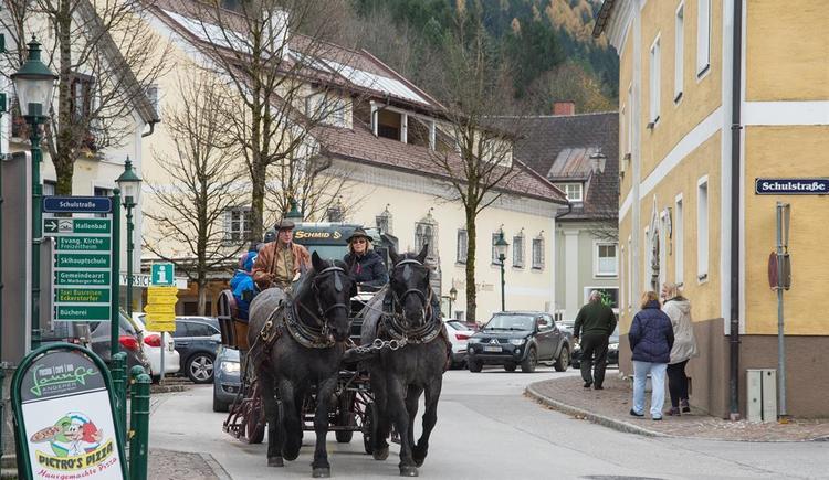 Kutschenfahrten (© Reiter´s Kutschenfahrten & Wanderritte)