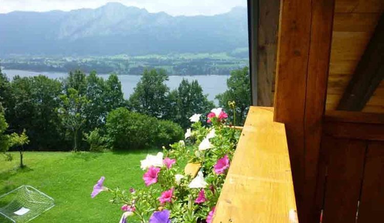 view from the balcony, meadows, trees, lake and mountains in the background