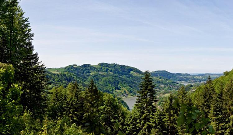 Panoramablick Schwarze Wand