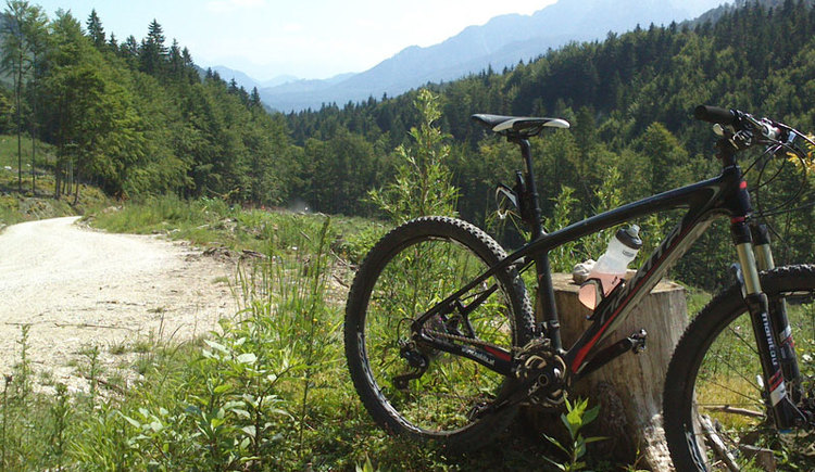 Almsee - Hochpfad - Offensee MTB Strecke. (© Tourismusverband Almtal, Foto by Gisela Eder)
