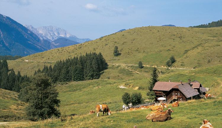 Anlaufalm. (© TV Nationalpark Region Ennstal)