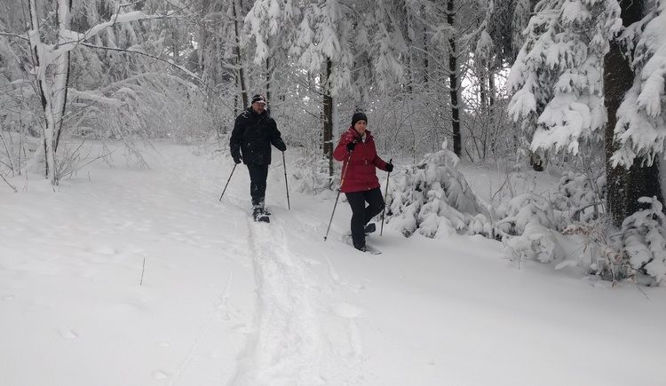 Schneeschuhwandern in Pfarrkirchen. (© TV Pfarrkirchen)