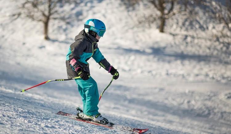 2016-03-18-Skilift-Riedlwirt-46 (© Riedlwirt)