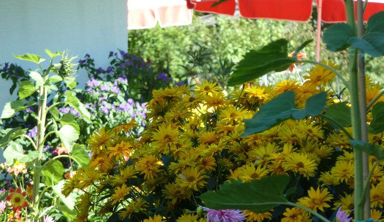 Garten (© Haus Brigitte)