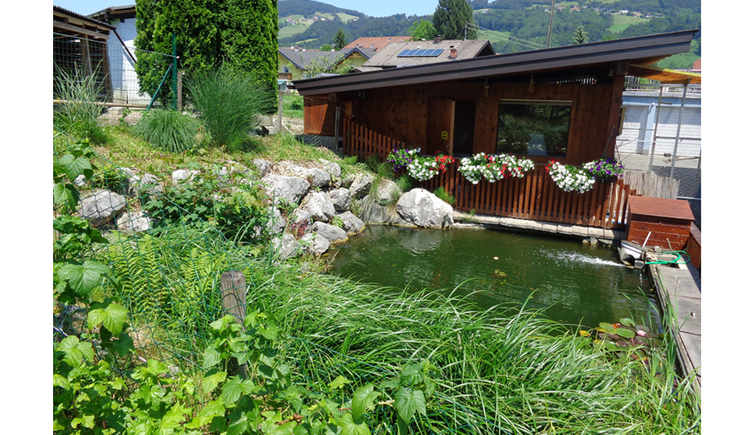 Plants, behind it a pond - hut, flowers