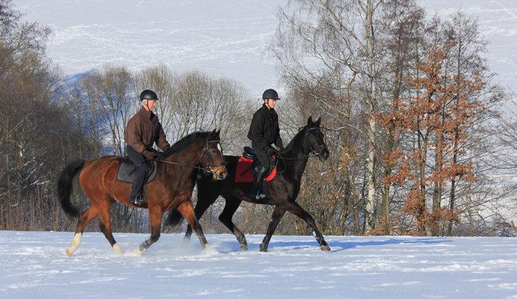 Winterreiten im Mühlviertel (© Reit-Erlebnis-Akademie Mühlviertler Kernland)
