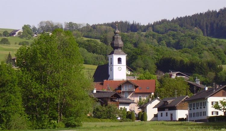 Blick auf die Kirche, Bäume. (© Tourismusverband MondSeeLand)