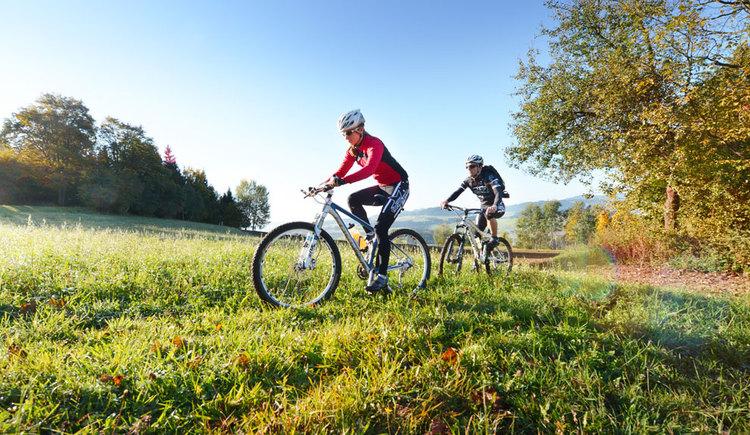 Mountainbiken im Granithochland Mühlviertel (© OÖ Tourismus/Röbl)