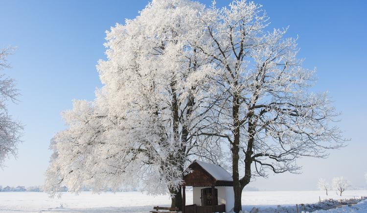 Winterlandschaft. (© Winterlandschaft)