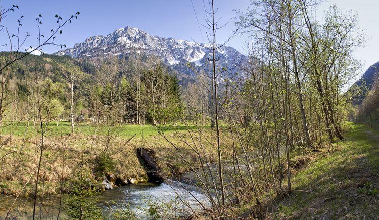 03_junge-teichl-mit-bosruck-sulzbacher_spital-am-pyhrn_landschaft (© TVB Pyhrn-Priel/Sulzbacher)