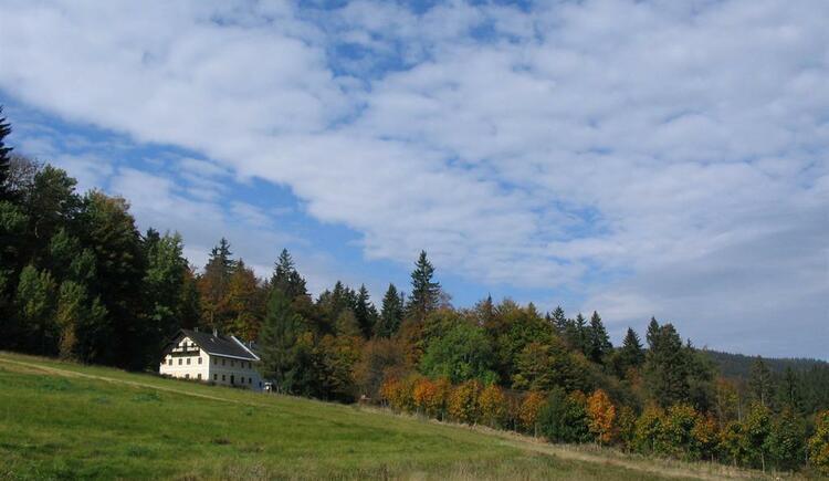 Waldschule (© Hackl)