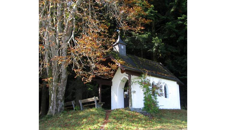 Blick auf die Kapelle, im Vorder- und Hintergrund Bäume