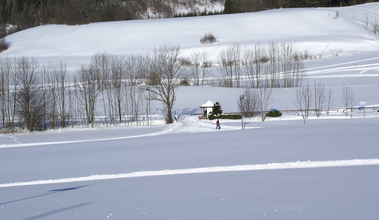 Cross-country skiing on the Ellmau trail (© Tourismusverband Fuschl am See, Bugarschitz)