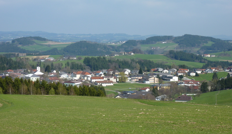 Ausblick von der Steiningerhöhe (© Tourismusverband Lembach i.M.)