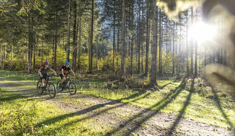 Shady forests and mystical impressions await mountain bikers on the Koppenwinkelsee Tour. (© WOM Medien GmbH Andreas Meyer)