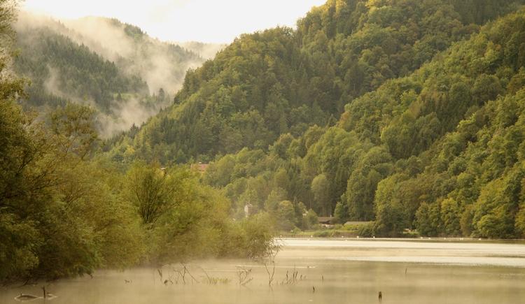 Gewitterstimmung, Biotop an der Donau