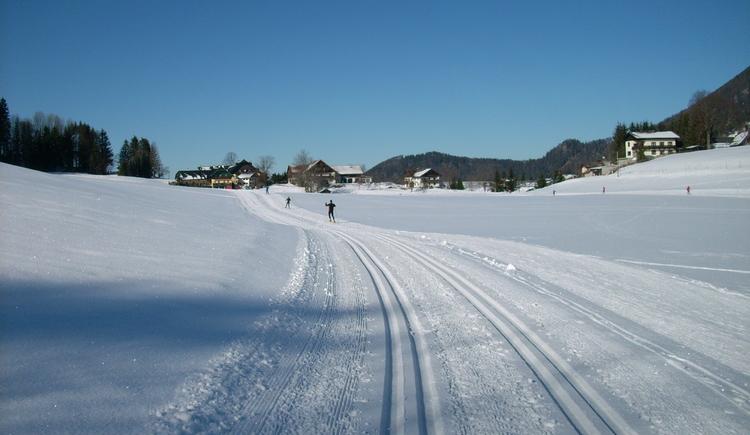 Bramsau trail in Faistenau (© Tourismusverband Faistenau)