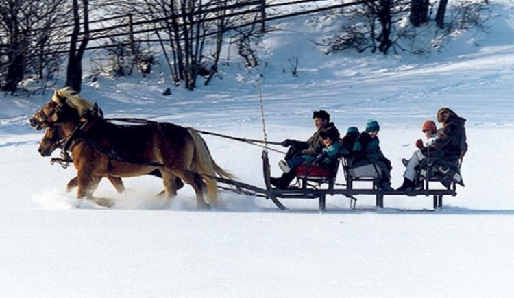 Pferdeschlittenfahrt (© Tourismusinformation Bad Leonfelden)