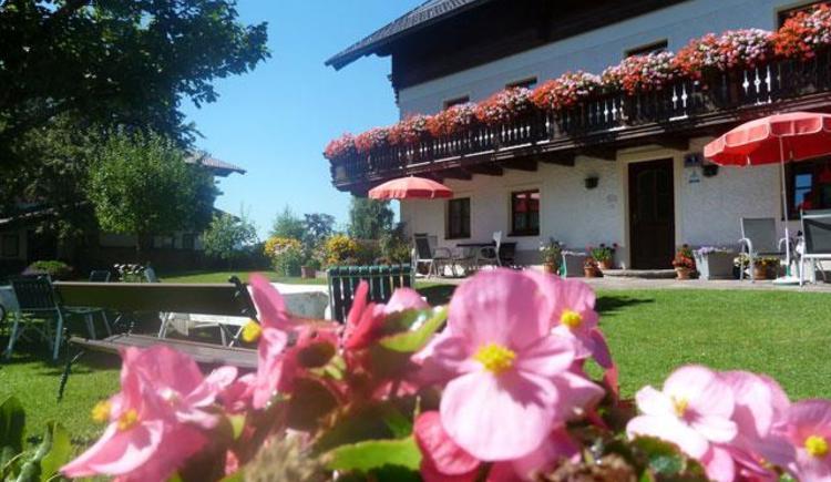 Haus Brigitte im Sommer