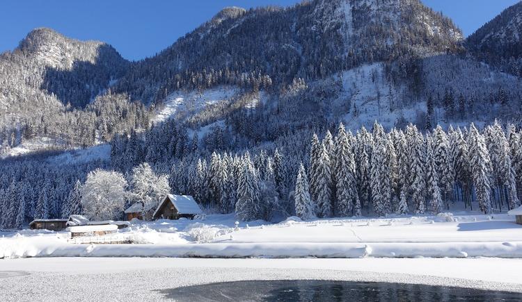 Ein Wintermärchen - Hütte und Teich im Januar (© Knappe-Benesteem)