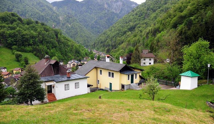 1600 m2 Grund für Ihr Haustier (© Haus SONNSTEIN zu EBENSEE am Traunsee)