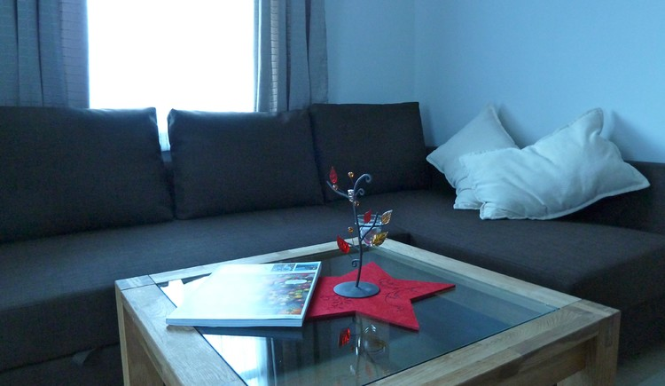 Living room with sofa and coffee table in the holiday house Salzberg.