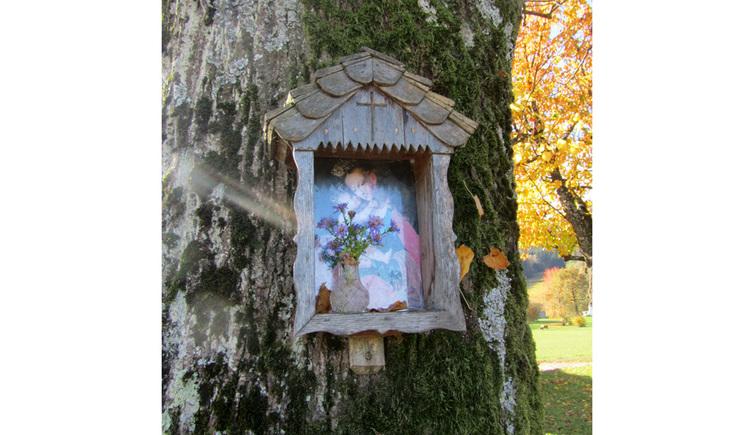 Blick auf ein Marienbild auf einem Baumstamm