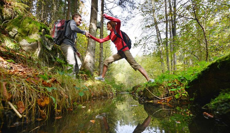 Die Ruhe und Kraft des Waldes spüren (© OÖ Tourismus/Röbl)