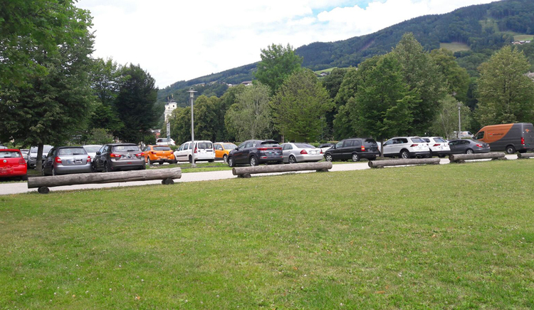 Parked cars, in the foreground meadow, in the background trees