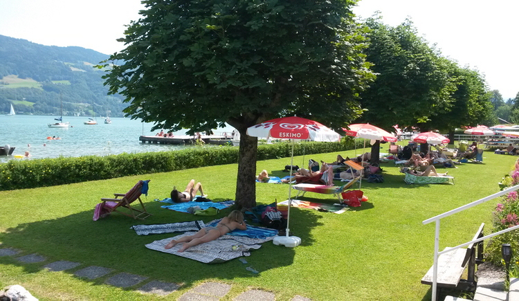 Beach area - meadow with trees, sun loungers, people,\nin the background the lake