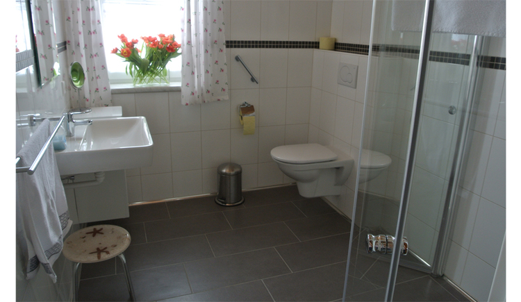 bathroom with stool, toilet with a handle, shower, mobile sink, window in the background