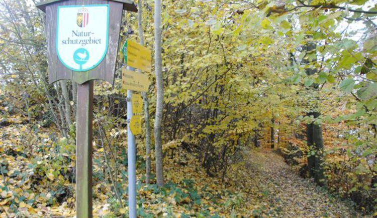 Europäisches Naturschutzgebiet Rannatal (© TV Pfarrkirchen)