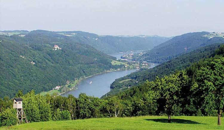 Blick auf die Donau von der Sauwald Panoramastraße.