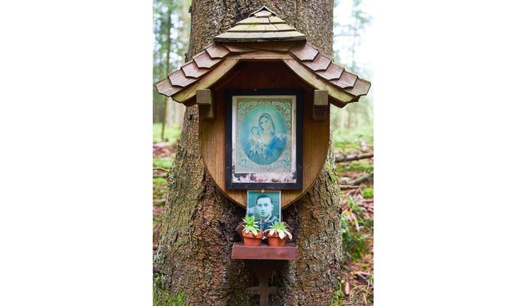 Blick auf das Holzmarterl auf einem Baum mit Marienbild, Foto von einer Person