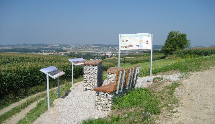 Rastplatz Weinbau Weinzierl