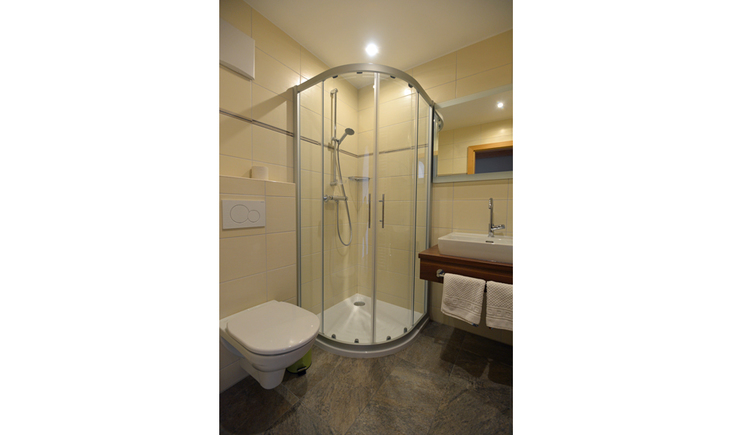 Dusche mit WC und Waschbecken