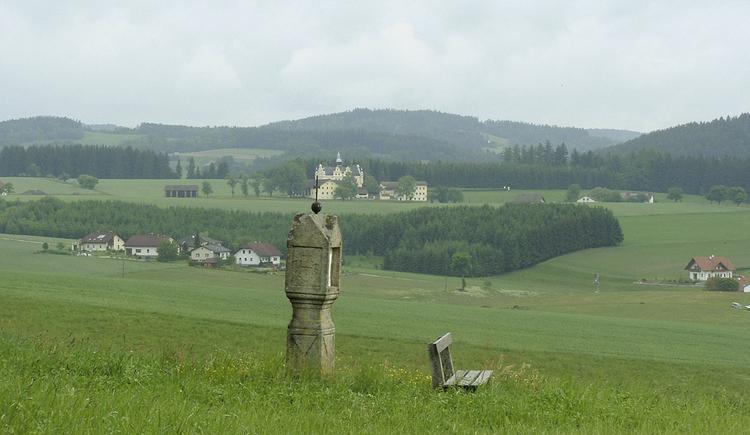 Blick auf Schloß Tannbach